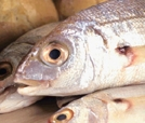 Pescado: una guía para comprar bien